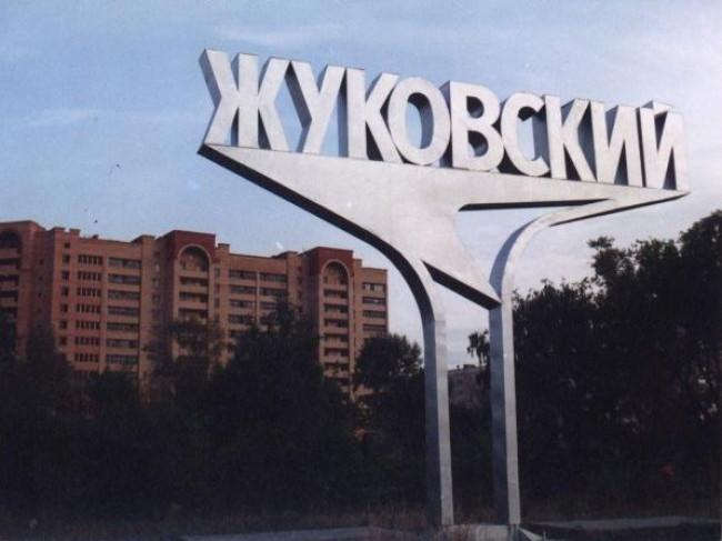 Выборы в Жуковском