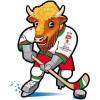 Беларусь 2014:  мачти по хоккею