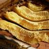 Башкирия продаст весь свой мед в Китай