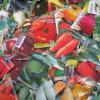 Правильный выбор и закупка семян