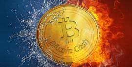 Перспективная криптовалюта Биткоин Кэш
