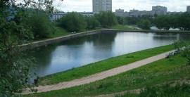 Благоустройство Коньковских прудов