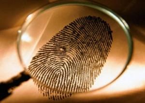 kriminalisticheskaya-ekspertiza